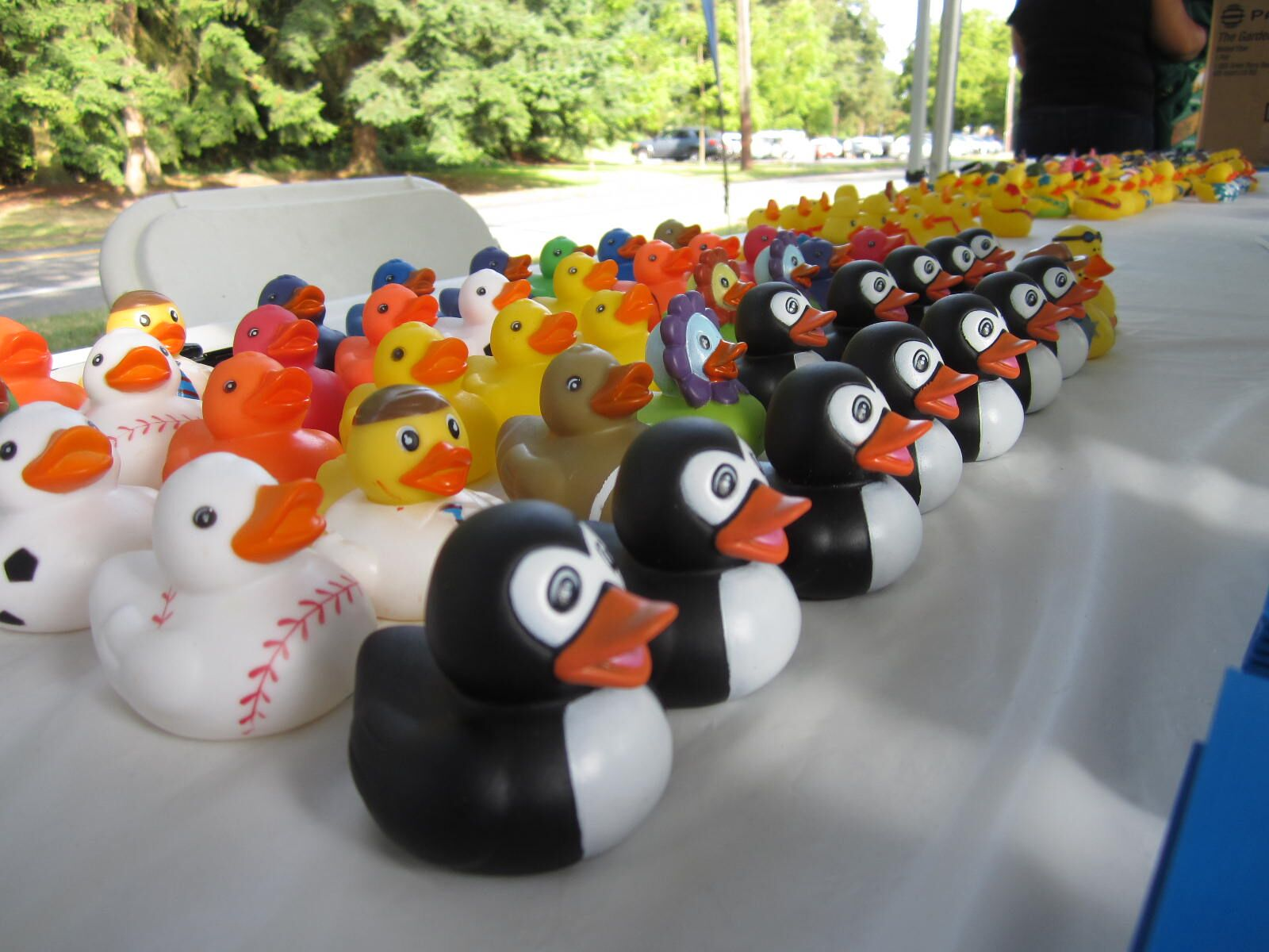 duckies